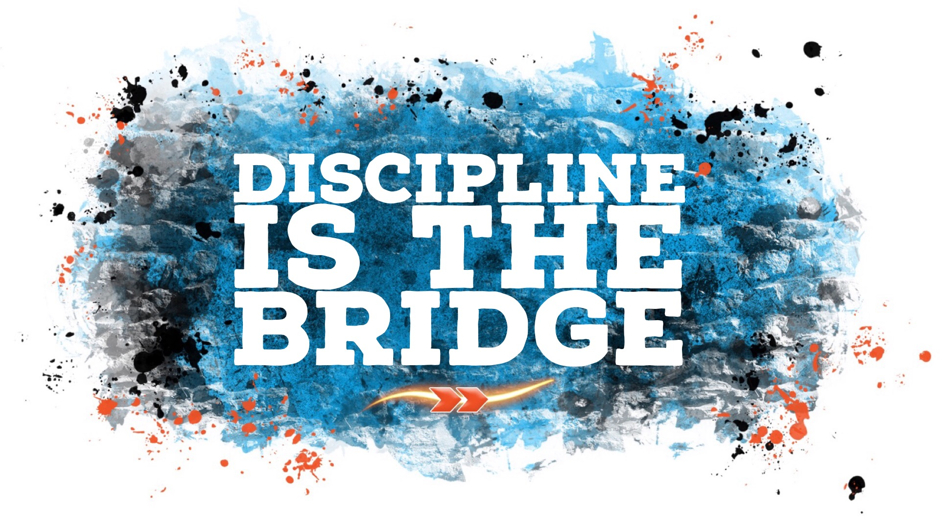 Discipline is the Bridge